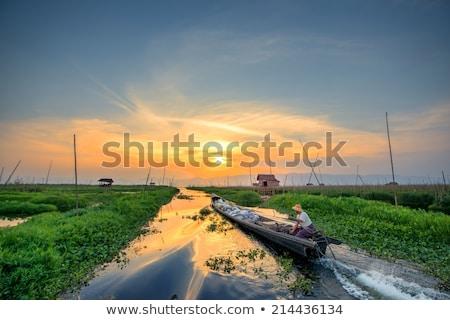 Floating gardens on Inle Lake in Myanmar Stock photo © Mikko