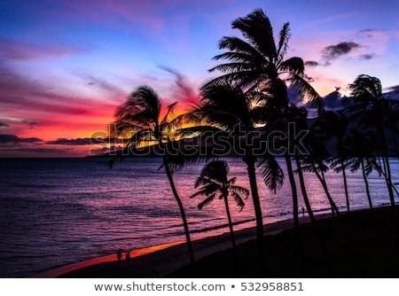 Hawaii · naplemente · drámai · néz · óceán · tengerpart - stock fotó © backyard-photography