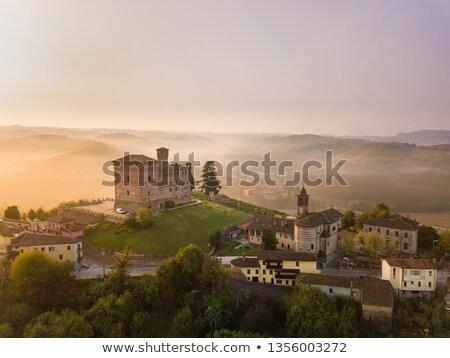 Grinzane Cavour in fog. Stock photo © rglinsky77