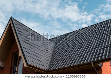 çatı mimari fotoğraf bungalov gökyüzü ev Stok fotoğraf © luissantos84