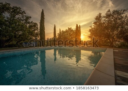 real tuscany landscape at beautiful sunset stock photo © taiga