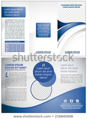 Onda estilo azul folheto vetor projeto Foto stock © SArts
