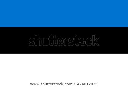 Estônia oficial bandeira metal cores polido Foto stock © molaruso