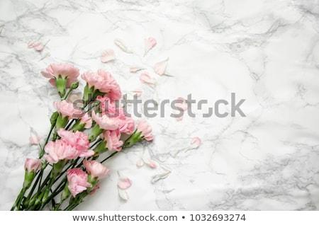 букет белый розовый красный изолированный вектора Сток-фото © orensila