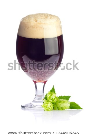 Beer goblet with aromatic hop and green leaves. Stock photo © brulove