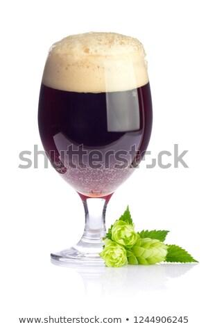hop · bladeren · witte · voorjaar · bier - stockfoto © brulove