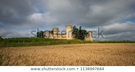 Chateau de Budos and wheat field in summer , Bordeaux, Gironde Stock photo © FreeProd