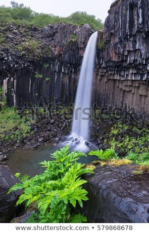 Cachoeira sul Islândia atração turística verão pedra Foto stock © Kotenko