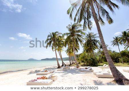 Praia Vietnã luz palma oceano areia Foto stock © boggy
