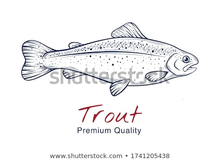 рыбы · икона · круга · дизайна · оранжевый · зеленый - Сток-фото © robuart