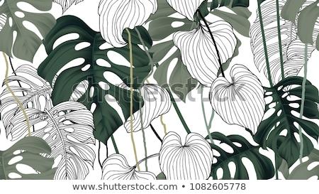 pálmalevél · sziluett · végtelen · minta · trópusi · levelek · tengerpart - stock fotó © margolana