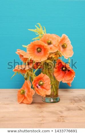 花瓶 淡い ピンク ポピー 木製のテーブル ターコイズ ストックフォト © sarahdoow