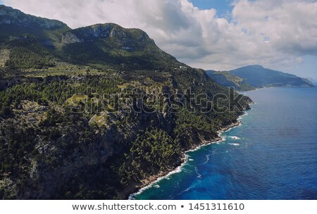 picturesque aerial photo of rocky coastline of son marroig in th stock photo © amok
