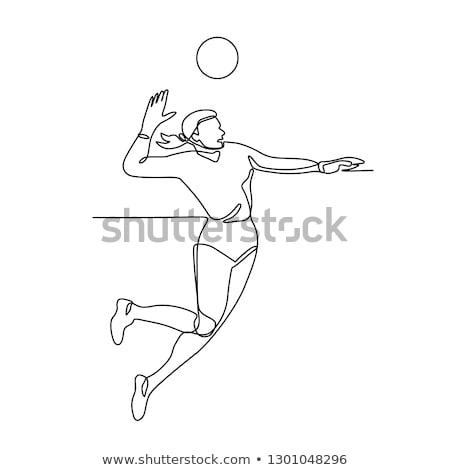 Volleyball Player Striking Ball Continuous Line Stock photo © patrimonio