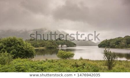 пейзаж озеро Ирландия гор небе трава Сток-фото © borisb17