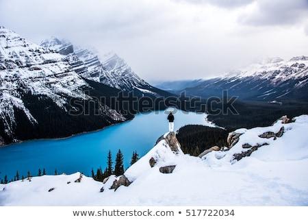 park · egy · sok · gyönyörű · hegy · égbolt - stock fotó © Pegasi8Imagery