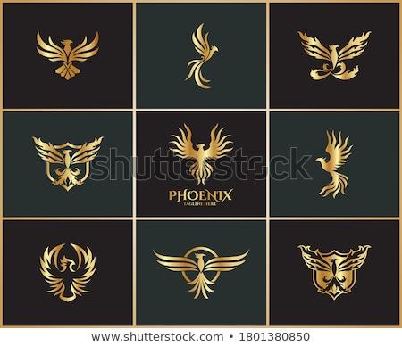 Elegant black and gold various icons set   Stock photo © sanjanovakovic