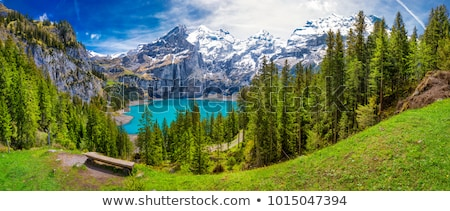 Alpok vízesés nyár kilátás gyönyörű hegy Stock fotó © wildman