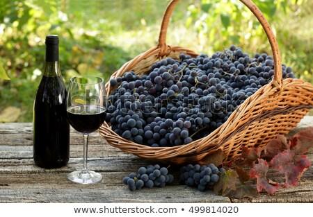 Garrafa vinho tinto uvas cesta preto madeira Foto stock © inaquim