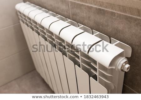 radiator in bathroom Stock photo © neirfy