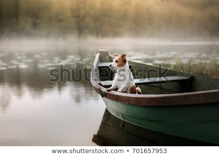 Hunter on boat with dog Stock photo © photography33