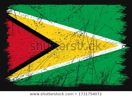 Grunge zászló Guyana öreg klasszikus grunge textúra Stock fotó © HypnoCreative