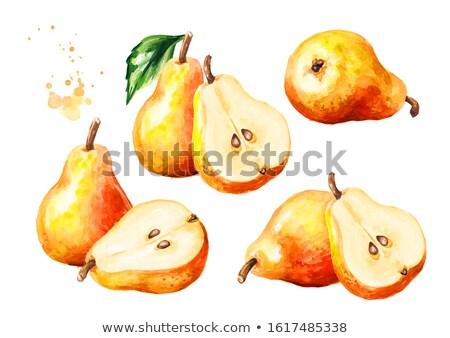 Сток-фото: акварель · иллюстрация · груши · аннотация · фрукты · фон