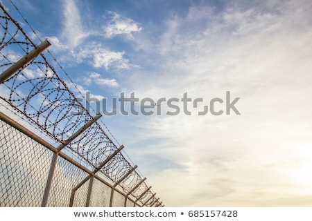 plastic wire fence background Stock photo © sirylok