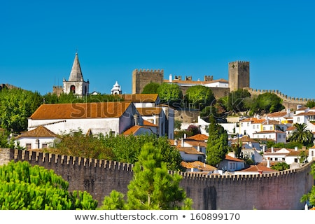 tile roofs of houses in obidos portugal stock photo © serpla