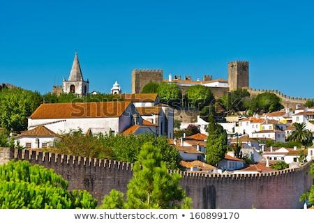 Karo çatılar evler Portekiz ortaçağ şehir Stok fotoğraf © serpla