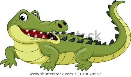 crocodilo · desenho · animado · relaxante · projeto · beleza · arte - foto stock © dagadu