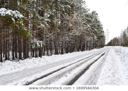 Inverno strada fango umido scivoloso strada Foto d'archivio © ultrapro