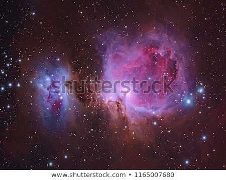 M42 Great Orion Nebula stock photo © rwittich