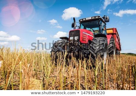 oude · boerderij · trekker · grasveld · klaar · borgtocht - stockfoto © donland