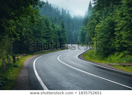 roadway stock photo © arenacreative