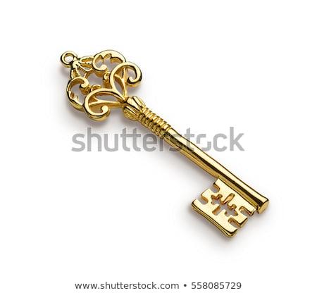 business education   golden key stock photo © tashatuvango