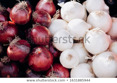 red and white onions Stock photo © romvo