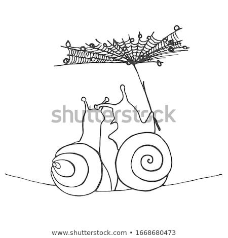Couple illustration nature cartoon célébration escargot Photo stock © adrenalina