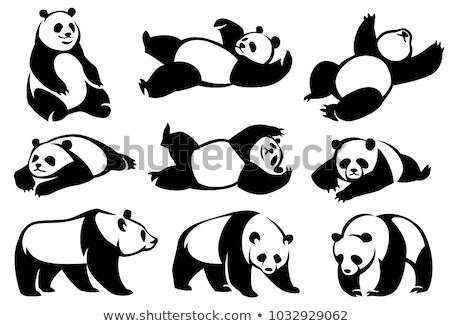 panda · bamboe · vergadering · tak - stockfoto © vectorflover