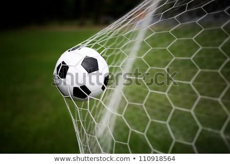 green football net green grass stock photo © jarin13