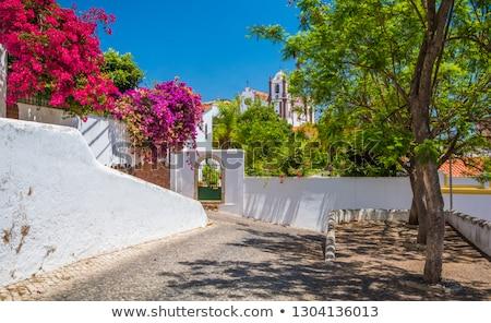 şehir duvarlar Portekiz ev sokak Stok fotoğraf © CaptureLight