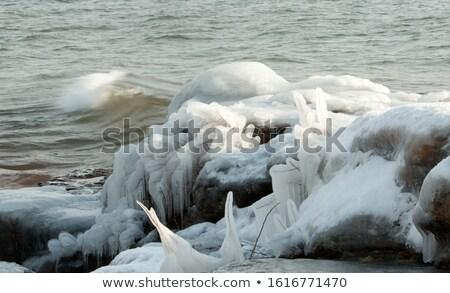 льда пород покрытый синий Сток-фото © kimmit