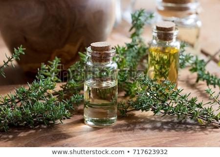Thyme oil Stock photo © yelenayemchuk