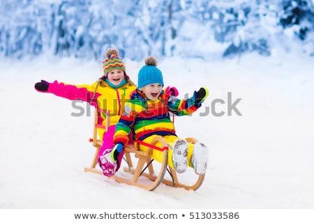 Lány szánkózás tél Dánia gyerekek hó Stock fotó © jeancliclac