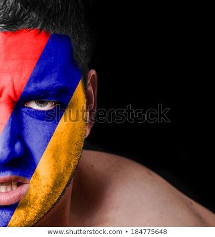 Бразилия Армения флагами головоломки изолированный белый Сток-фото © Istanbul2009