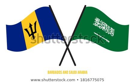 Suudi Arabistan Barbados bayraklar bilmece yalıtılmış beyaz Stok fotoğraf © Istanbul2009