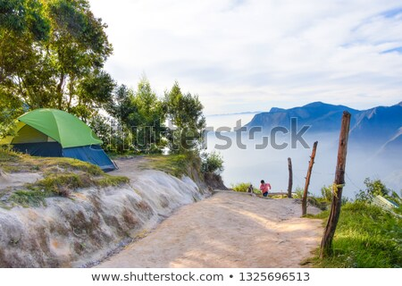 Misty forest and tourist information signs Stock photo © ondrej83