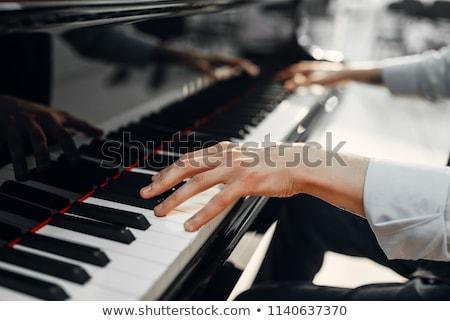 рук · играет · мелодия · музыкальный · инструмент · большой · палец · руки · арфа - Сток-фото © paha_l