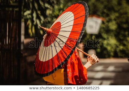 Japonês gueixa guarda-chuva ilustração flores feminino Foto stock © adrenalina