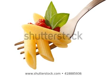 Tészta villa paradicsomszósz gyógynövény hozzávaló Stock fotó © Digifoodstock